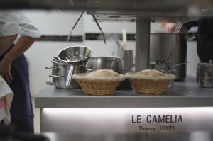 Le Camélia 2
